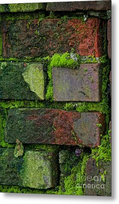 Metal Print featuring the digital art Mossy Brick Wall by Carol Ailles