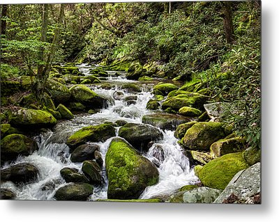 Mossy Creek Metal Print