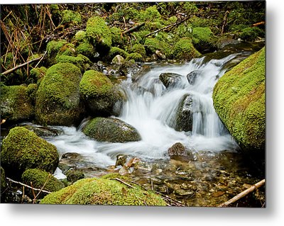 Mossy Greek Metal Print by Christopher Kimmel