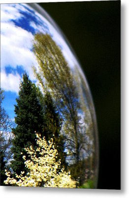 Metal Print featuring the photograph Mother Earth by Angela Davies