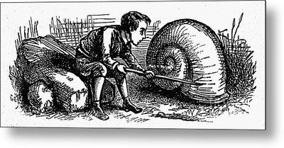Mother Goose: Snail Metal Print by Granger