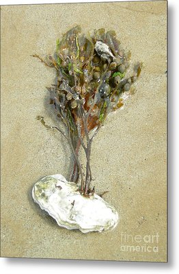 Mother Nature... The Only True Artist Metal Print