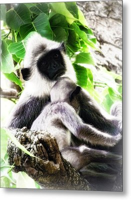 Motherly Love Metal Print by Dumindu Shanaka