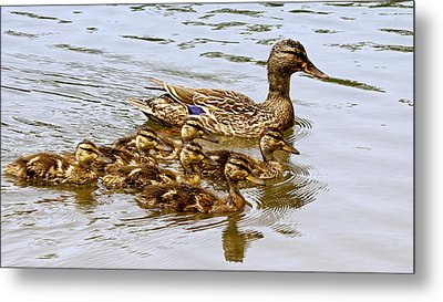 Mothers Day Metal Print by Susi Stroud