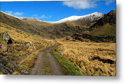 Metal Print featuring the photograph Mount Brandon by Barbara Walsh