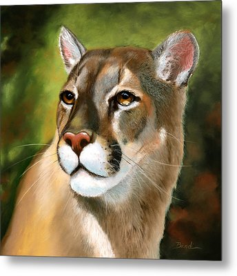 Mountain Lion Metal Print