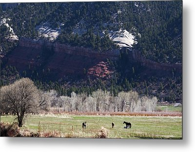 Metal Print featuring the photograph Mountain Pasture by Lorraine Devon Wilke