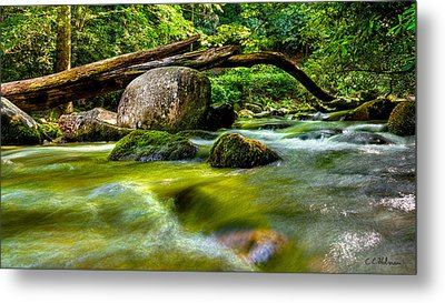 Mountain Stream Metal Print by Christopher Holmes