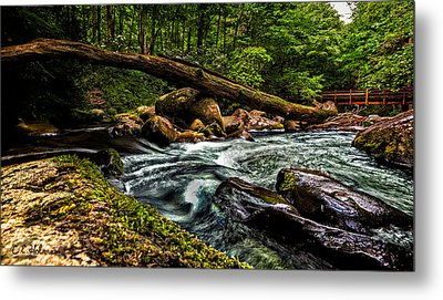 Mountain Stream Iv Metal Print by Christopher Holmes