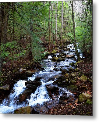 Metal Print featuring the photograph Mountain Stream by Paul Mashburn