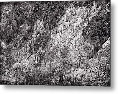 Mountainside At Hayden Valley Yellowstone Metal Print by Steve Gadomski