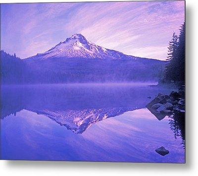 Mt. Hood And Trillium Lake Mt Hood Metal Print by Dan Sherwood