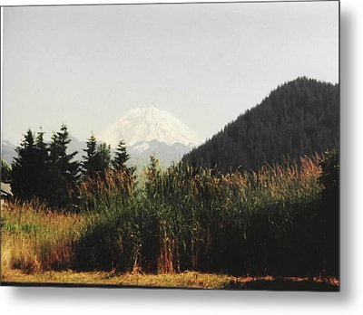 Metal Print featuring the photograph Mt. Rainier In Hiding by Sadie Reneau