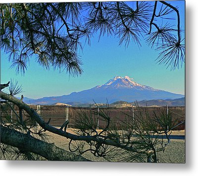 Mt Shasta At Weed  Metal Print by Pamela Patch
