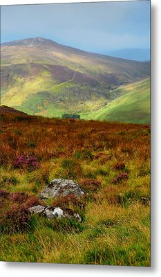 Multicolored Hills Of Wicklow. Ireland Metal Print by Jenny Rainbow
