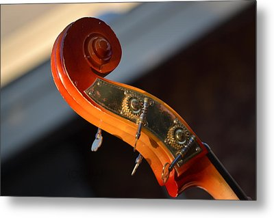 Metal Print featuring the photograph Music by Rima Biswas