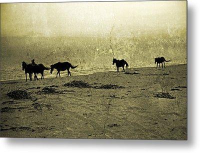 Mustangs Metal Print by Betsy Knapp