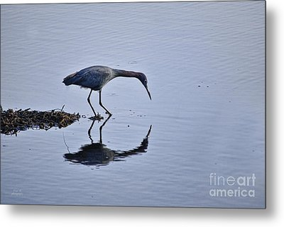 My Blue Reflection Metal Print by Diego Re