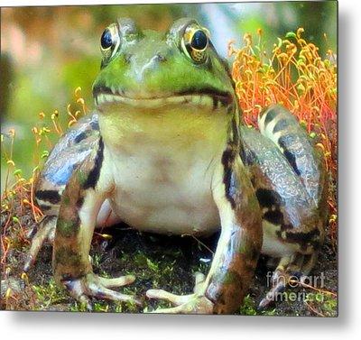 My Frog Friend Metal Print by Patricia Januszkiewicz