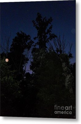 My Personal Backyard Moon Metal Print
