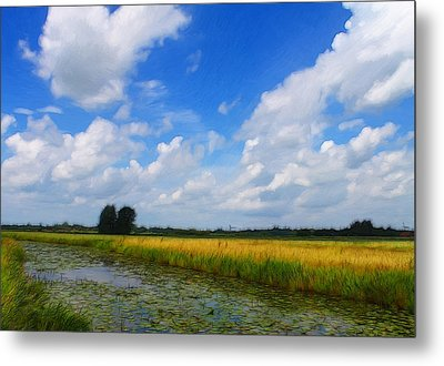 My Wonderful Eastfrisia Metal Print by Steve K