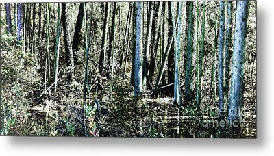 Mystery Forest Metal Print by Olivier Le Queinec