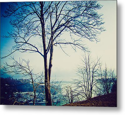 Mystic Blue Metal Print by Sara Frank