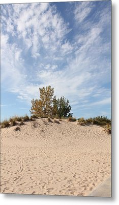Nantucket Metal Print by Sheryl Burns