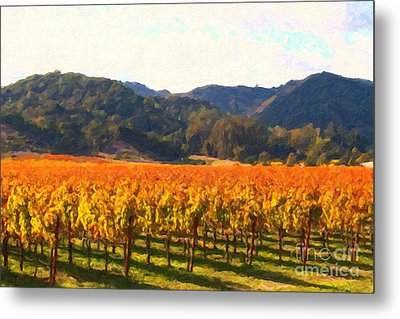 Napa Valley Vineyard In Autumn Colors Metal Print by Wingsdomain Art and Photography