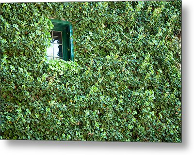 Metal Print featuring the photograph Napa Wine Cellar Window by Shane Kelly