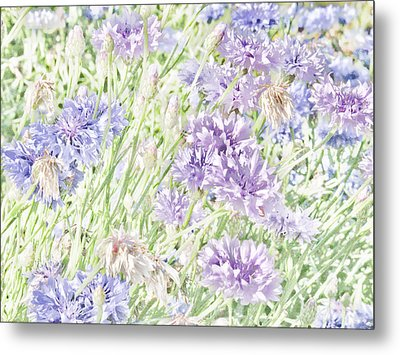 Natural Beauty Metal Print by Bonnie Bruno