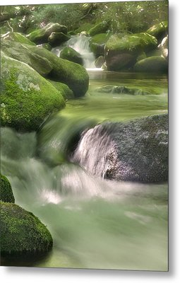 Natural Beauty Metal Print
