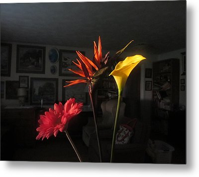 Metal Print featuring the photograph Natural Light by Tina M Wenger