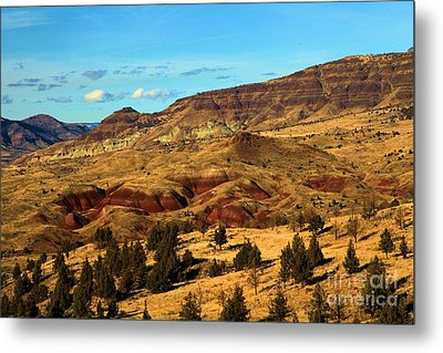 Natural Paint Metal Print by Adam Jewell
