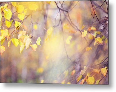 Natural Watercolor Of Autumn Metal Print by Jenny Rainbow