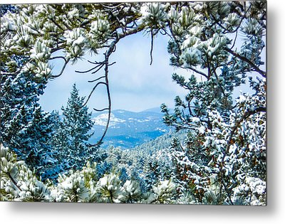 Metal Print featuring the photograph Natural Wreath by Shannon Harrington