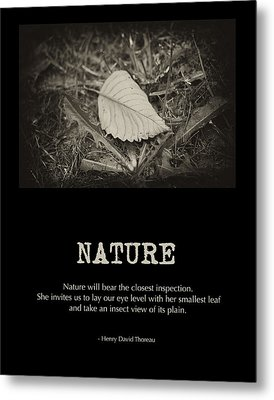 Nature Metal Print by Bonnie Bruno