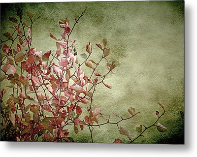 Nature On Parade Metal Print by Bonnie Bruno