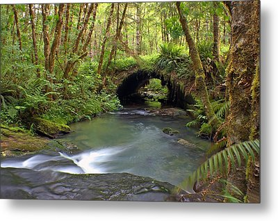 Nature Tunnel Metal Print