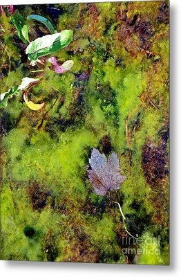 Nature's Absract Metal Print by Christian Mattison