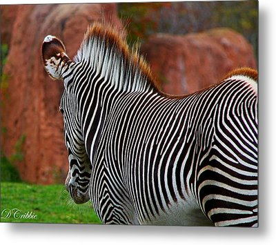 Nature's Barcode Metal Print
