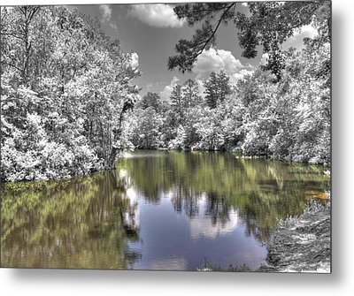 Nature's Dream Metal Print