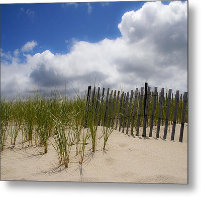 Metal Print featuring the photograph Nauset Dune by Michael Friedman