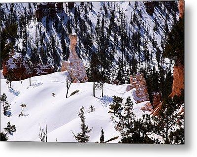 Navajo Loop Trail Metal Print by Viktor Savchenko