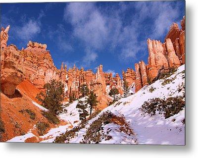 Navajo Trail Metal Print by Viktor Savchenko