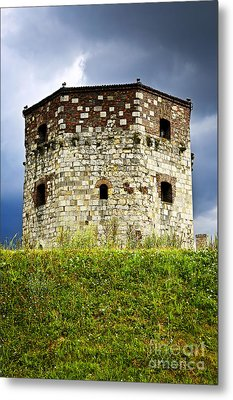 Nebojsa Tower In Belgrade Metal Print by Elena Elisseeva