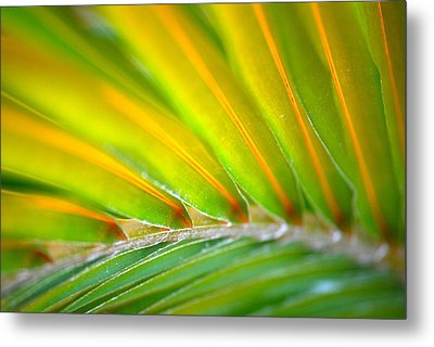 Neon Palm Metal Print by Kimberly Gonzales