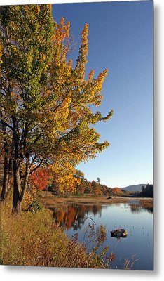 New Mills Meadow Pond Metal Print by Juergen Roth