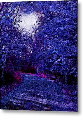 New York Autumn Night Forest Metal Print by Steve Ohlsen