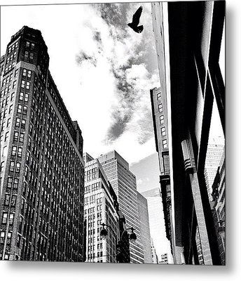 New York City - In Flight Metal Print by Vivienne Gucwa
